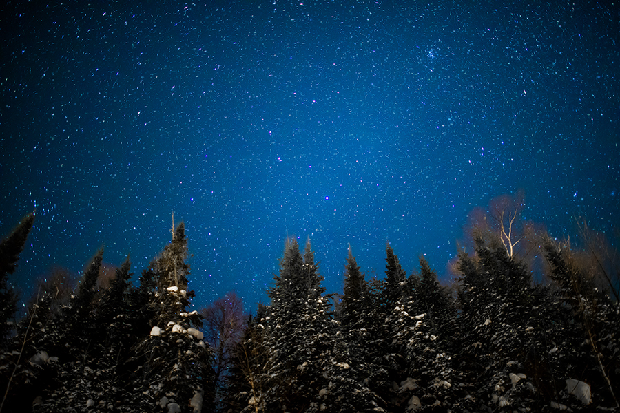 gfl_winter-675.jpg