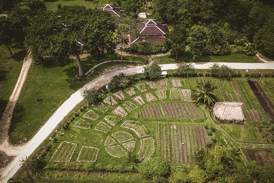 belize-aerial-drone-videographer