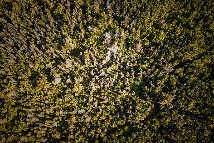 gfl_drone-6.jpg