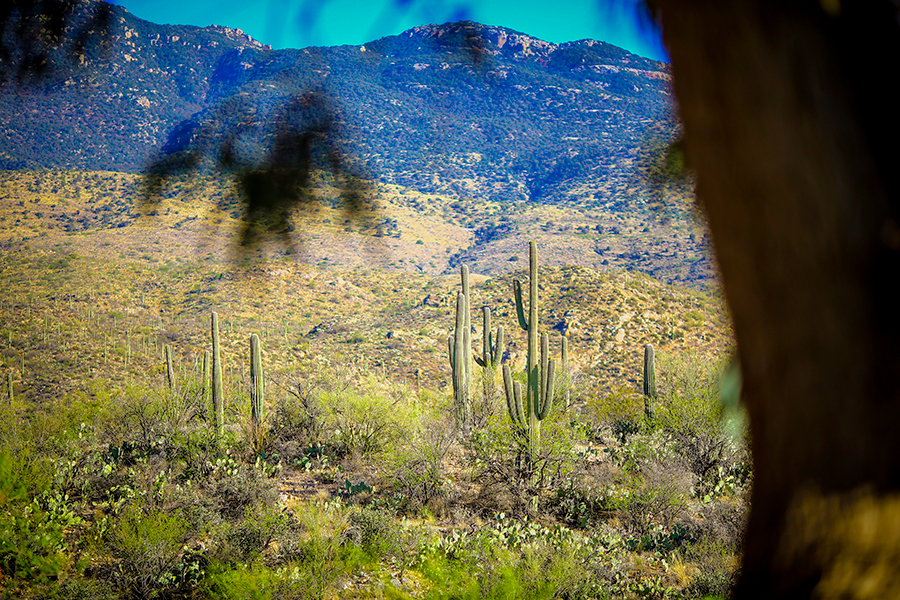 best-colorado-luxury-ranch-photographer