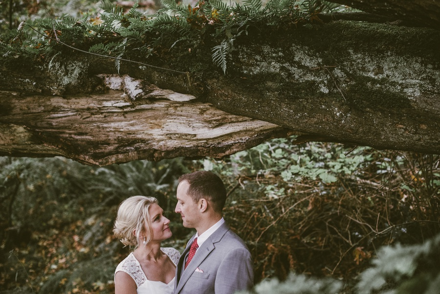 elopement in the woods seattle elopement photographer