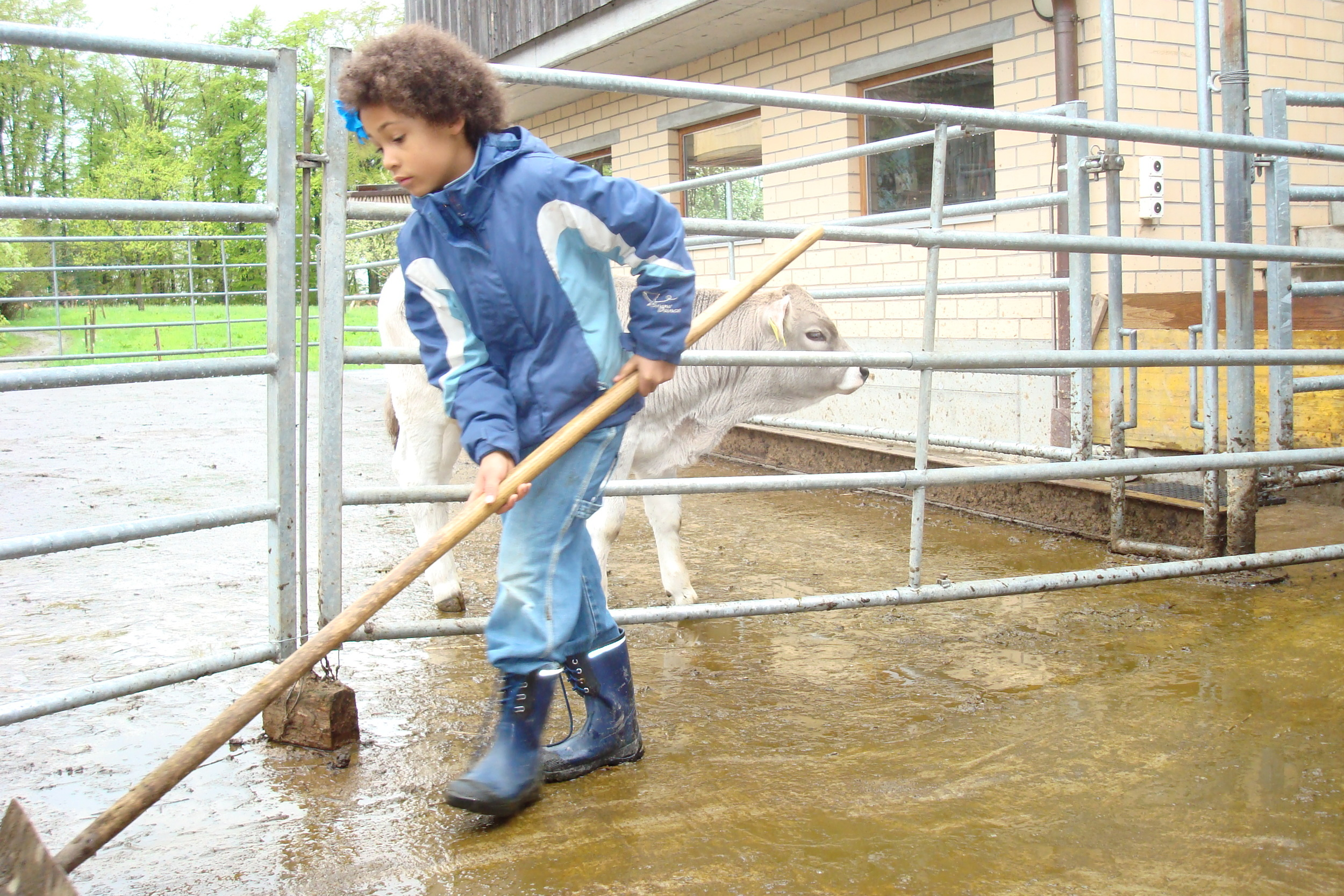 Fotos Bauernhoflager April 2009 007.jpg