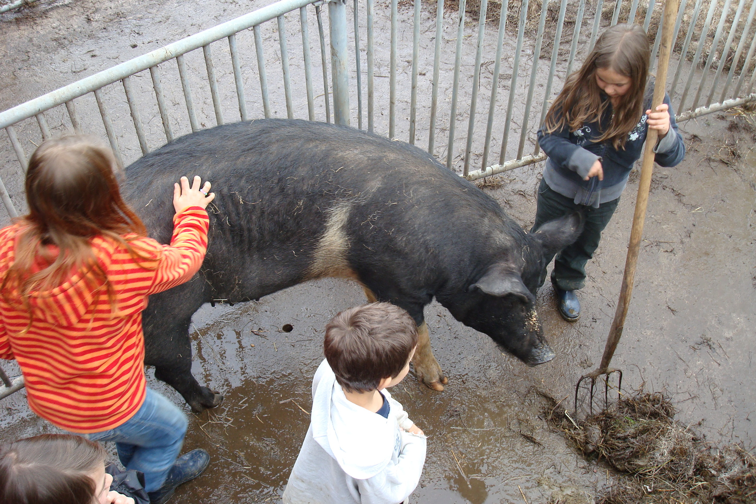 Fotos Bauernhoflager April 2009 030.jpg