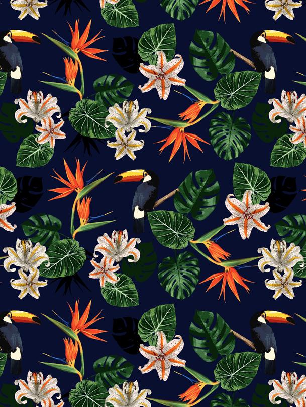 Tropical Toucans - New Look // Bella Gomez