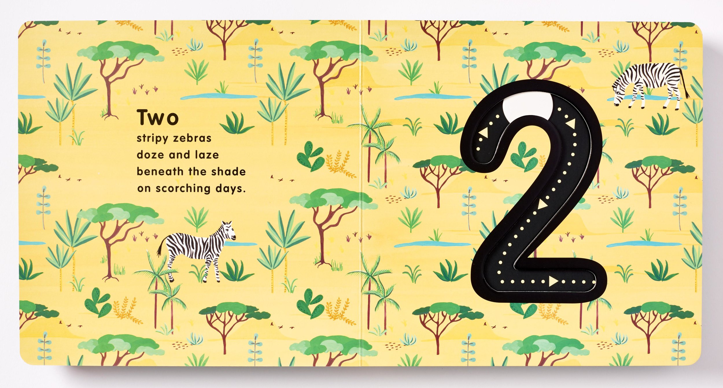 5 Wild Numbers Book Illustrated by Bella Gomez