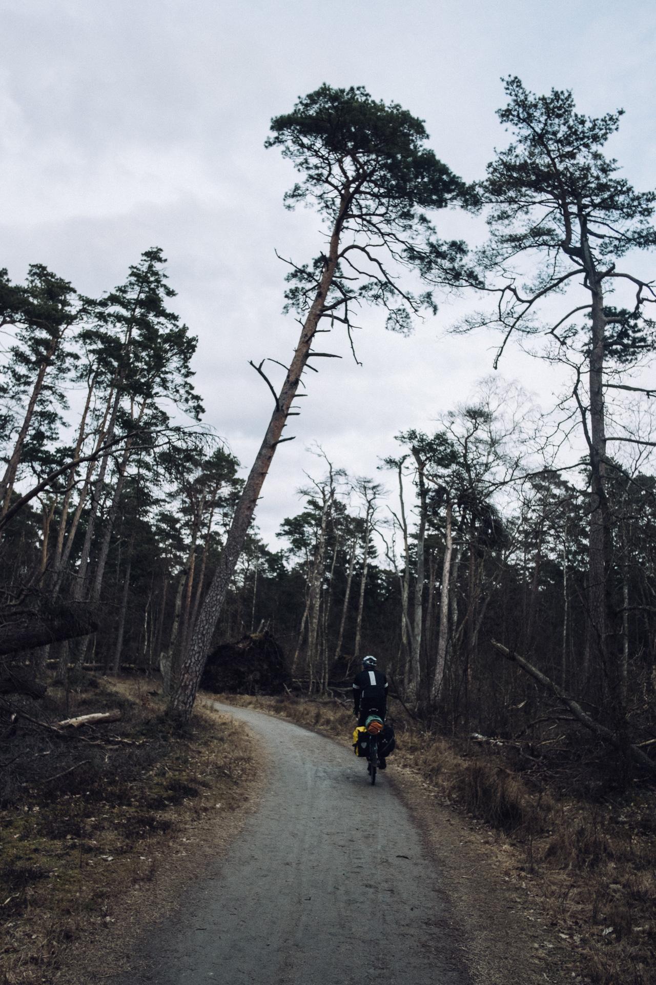 SebastianDahl-11-_DSF2856-Bicycling with Jules from CPH to GTB.jpg