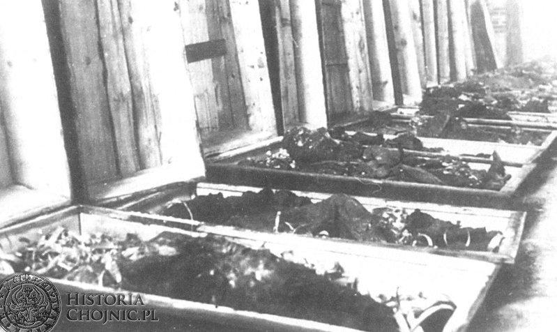 """Trumny ze szczątkami rozstrzelanych w """"Dolinie Śmierci"""" wystawione w wypalonej farze przed pogrzebem w dniu 8 grudnia 1945 roku (źródło: historiami.pl)"""