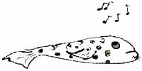 Fishing Music - Asheville Fly Fishing Company