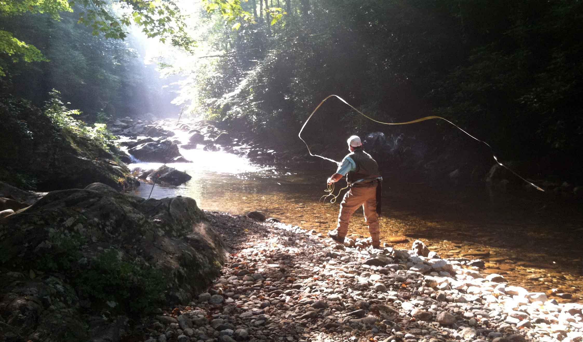 Asheville Fy Fishing Company