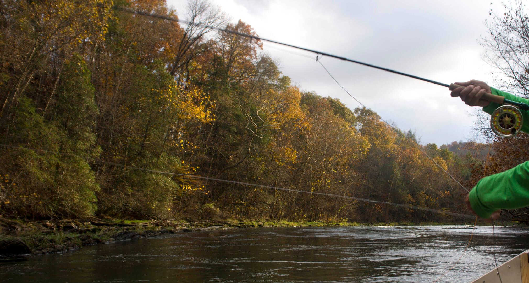 Asheville Fly Fishing Company - 1_20.jpg