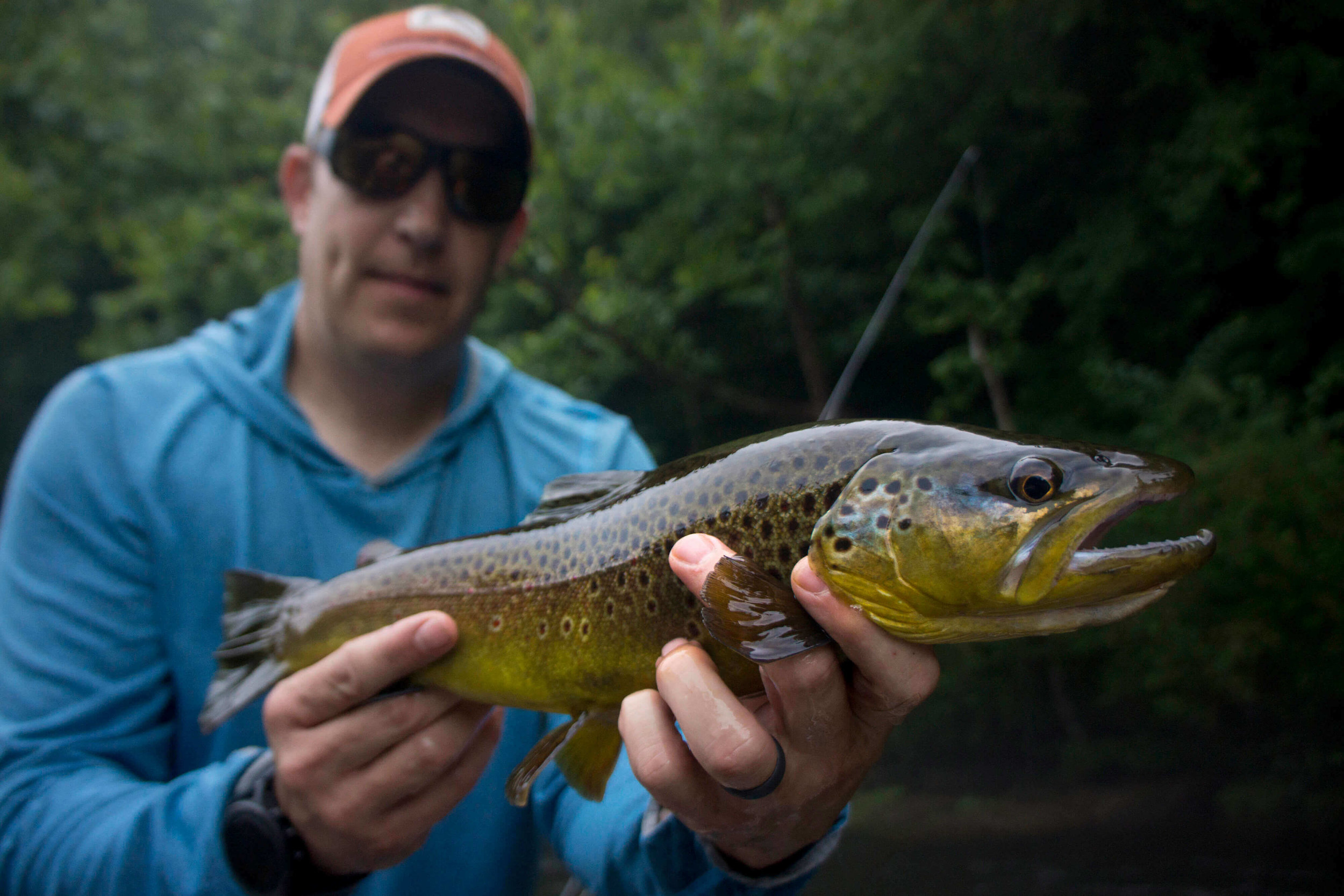 Asheville Fly Fishing Company - 1_23 12.23.47 AM.jpg