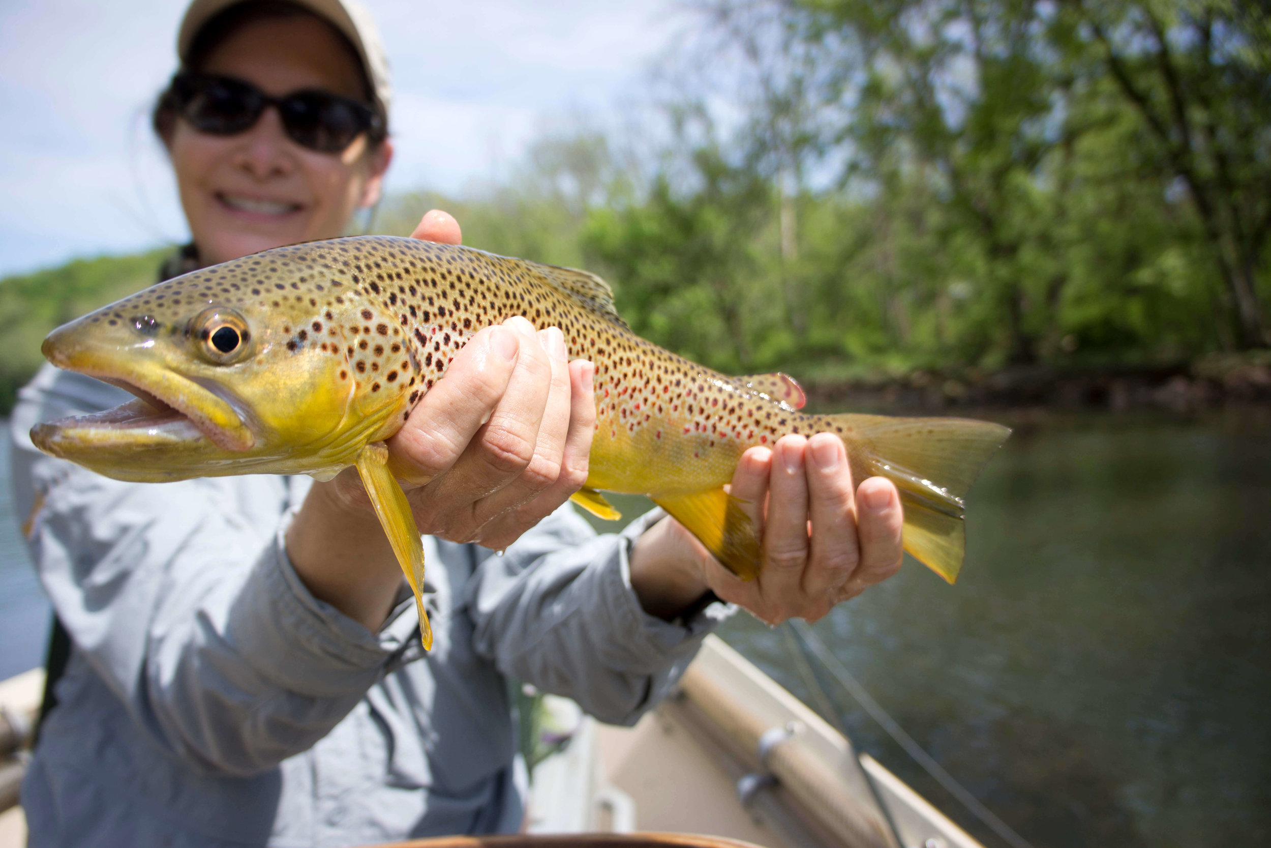 Asheville Fly Fishing Company - 1_9.JPG
