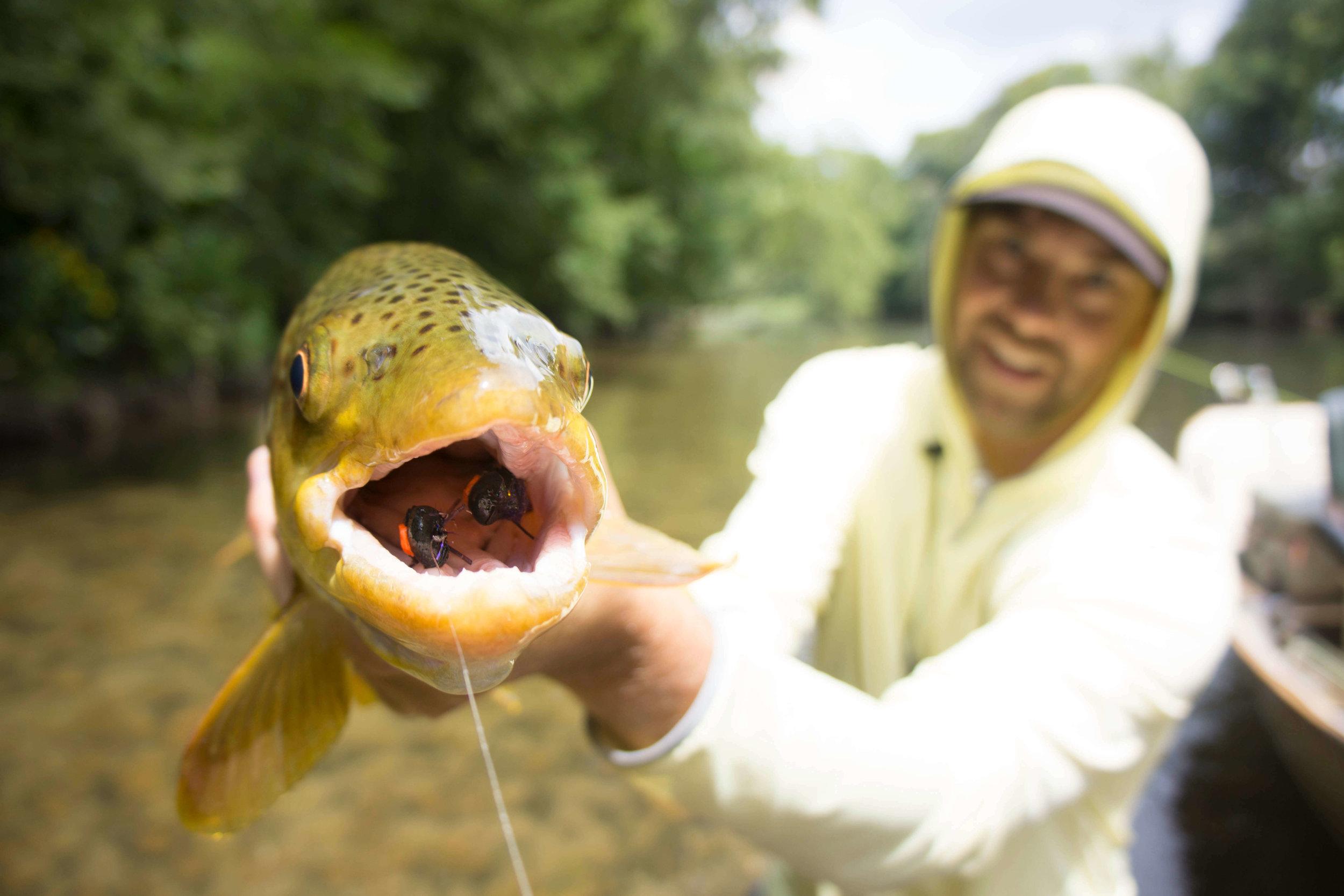 Asheville Fly Fishing Company _7.JPG