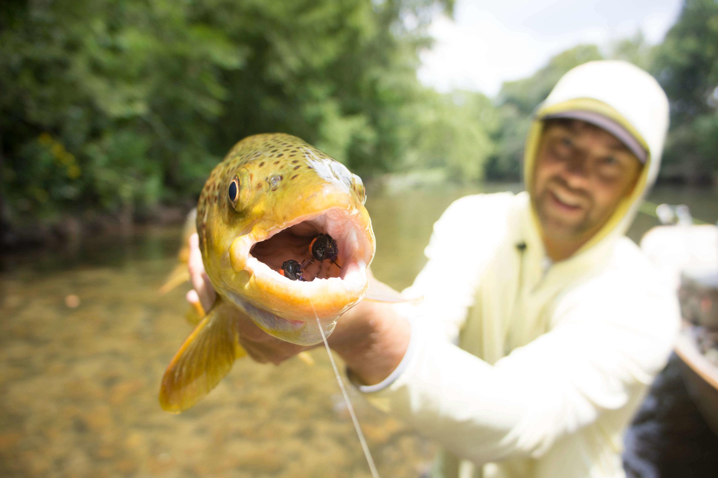 Asheville Fly Fishing Company _6.JPG