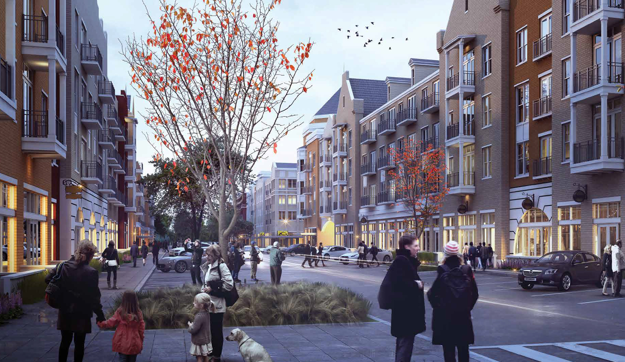 Phase II Street View Concept