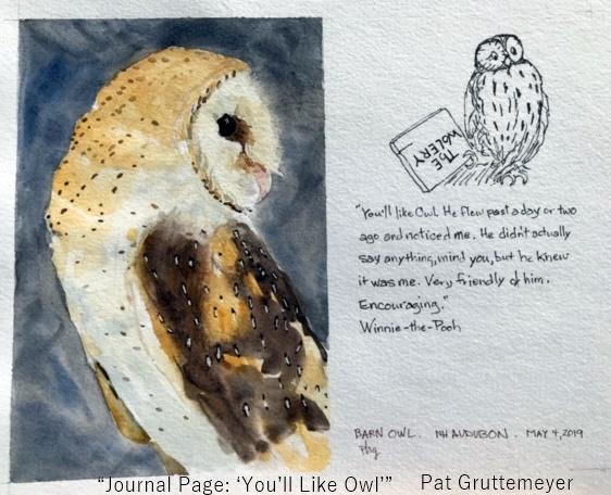 NJ Owl.jpg