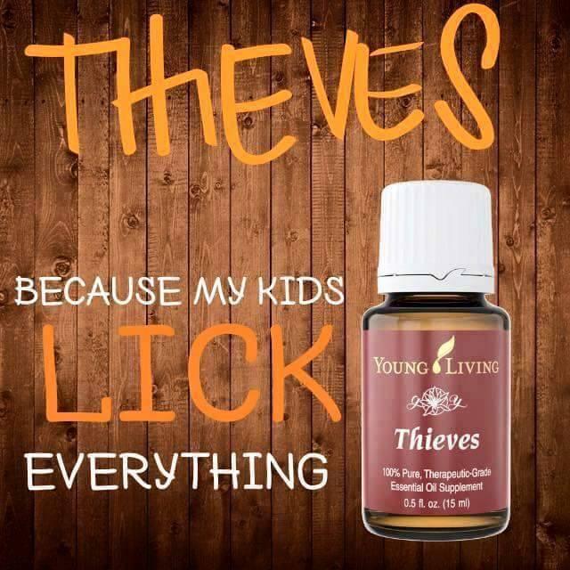 thieves blurb.jpg