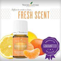 citrus fresh.jpg