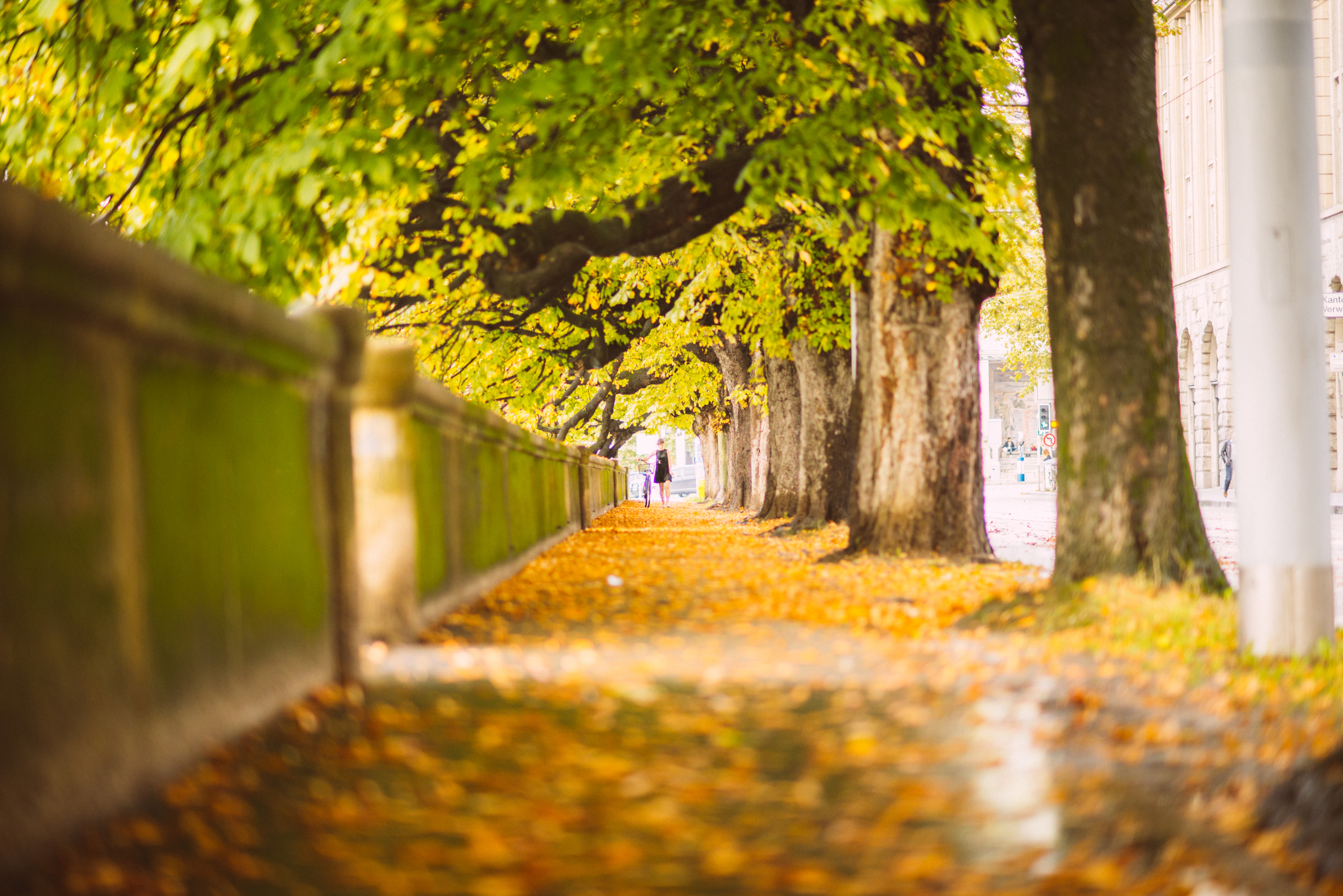 Europe_Photos20335.jpg
