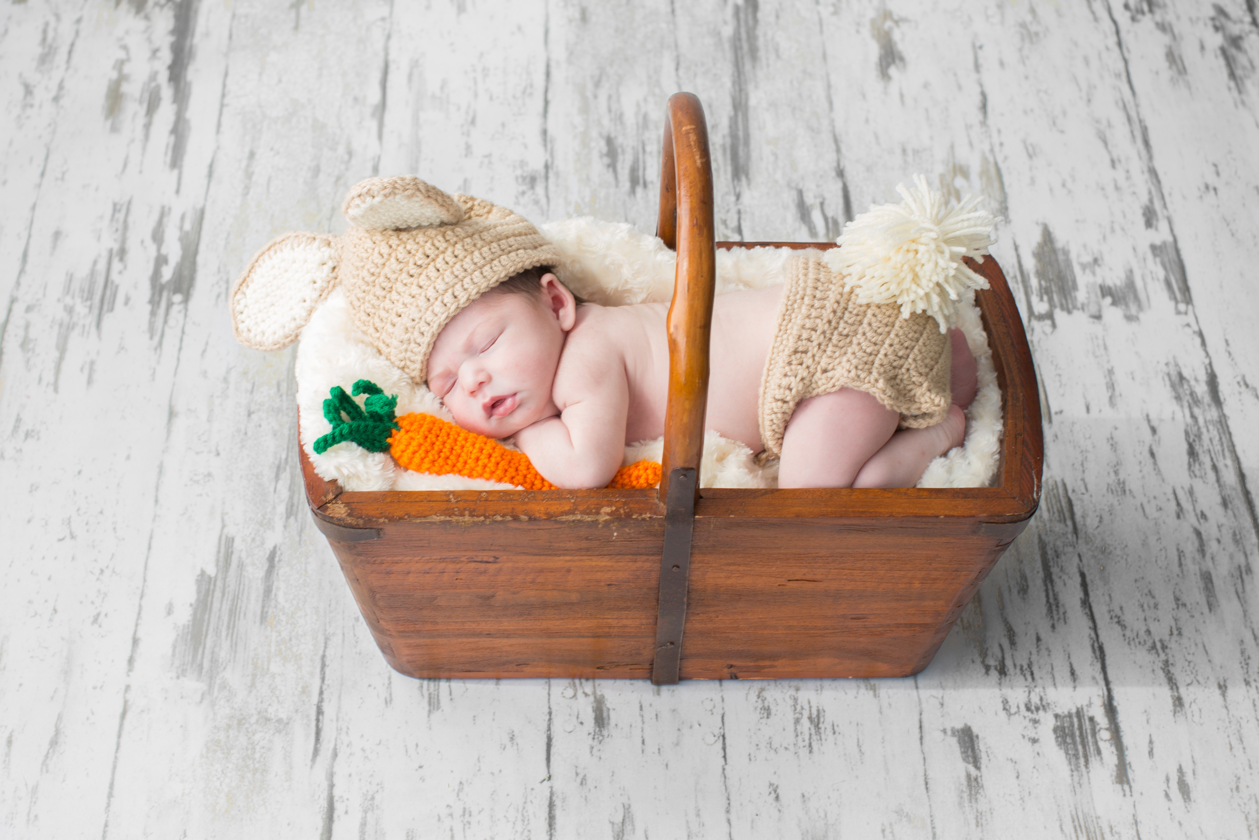 newborn in a basket.jpg