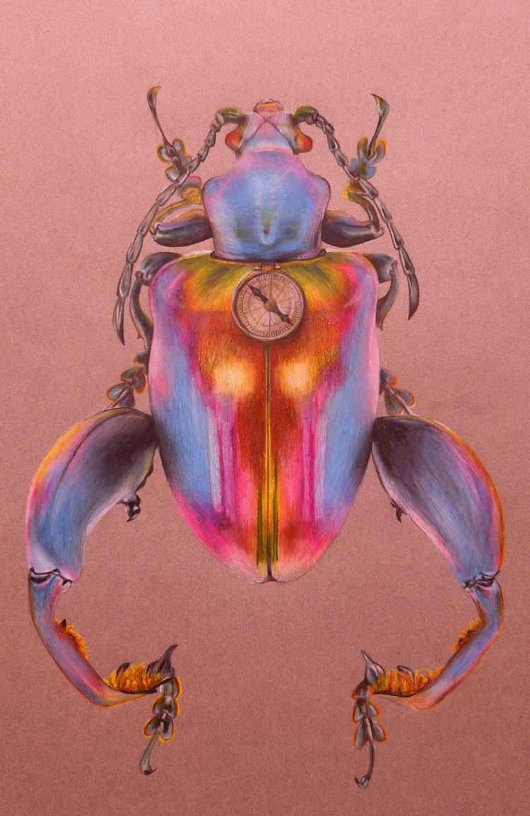 """The Traveler   12""""x18"""", Colored pencil, 2015"""
