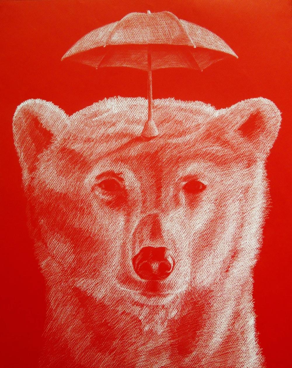 "Rainy Day Bear  18""x24"" White chalk on red paper, 2016"