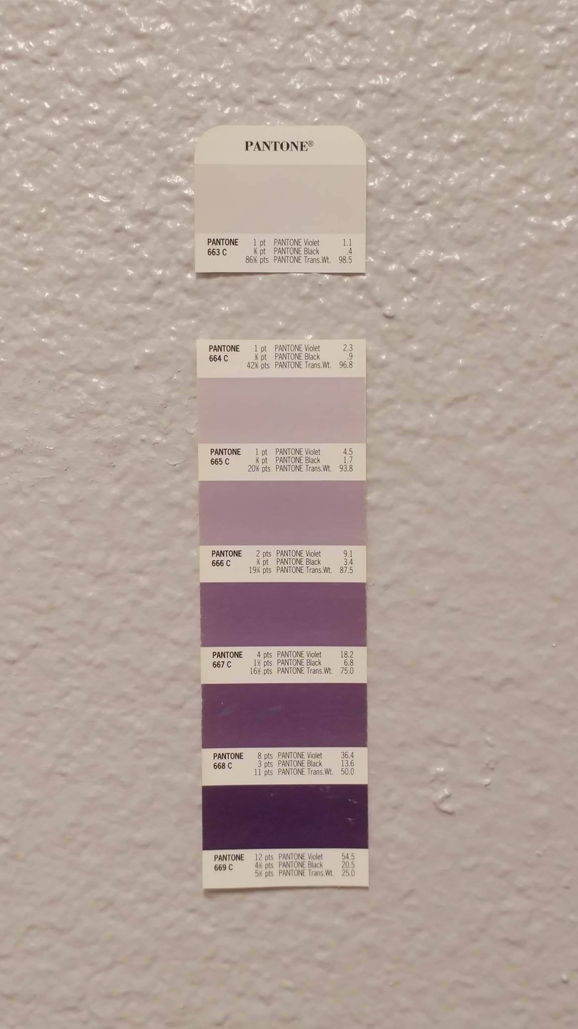 Pantone 664C / Kitchen Wall