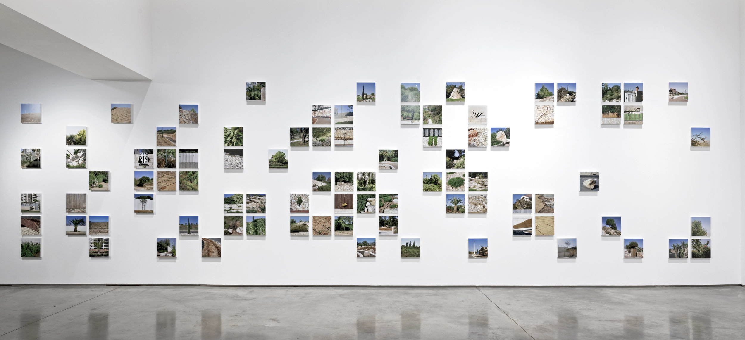 installation view of  Garden State ,  Her Ground: Women Photographing Landscape , Flowers Gallery, London, 2019