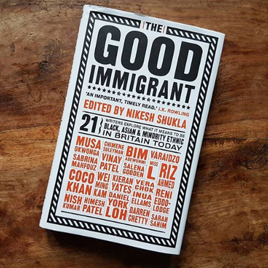 14 the good immigrant.png