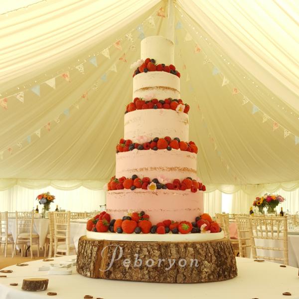phil_jensen_christine_jensen_peboryon_cornwall_wedding_cake_ombre_fresh_fruit_semi_naked_boconnoc.png