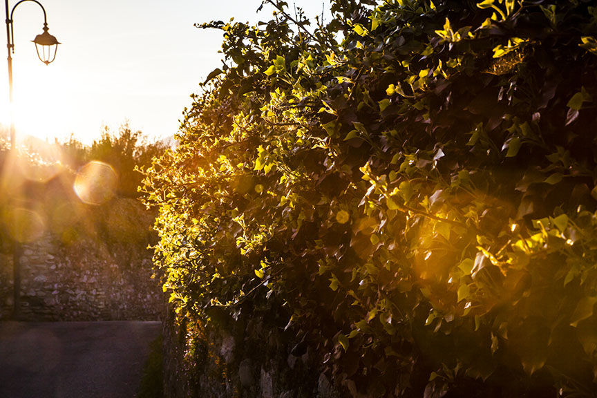 This village lane in the sunset was a moment to remember