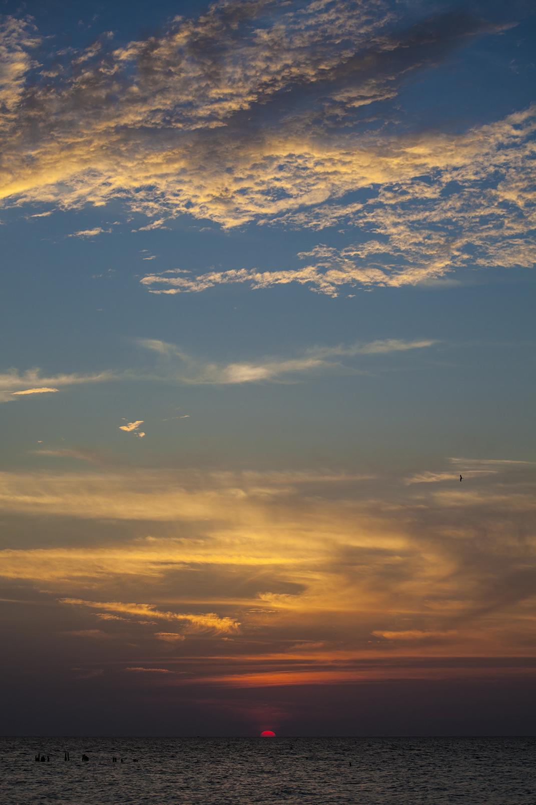tall sky.jpg