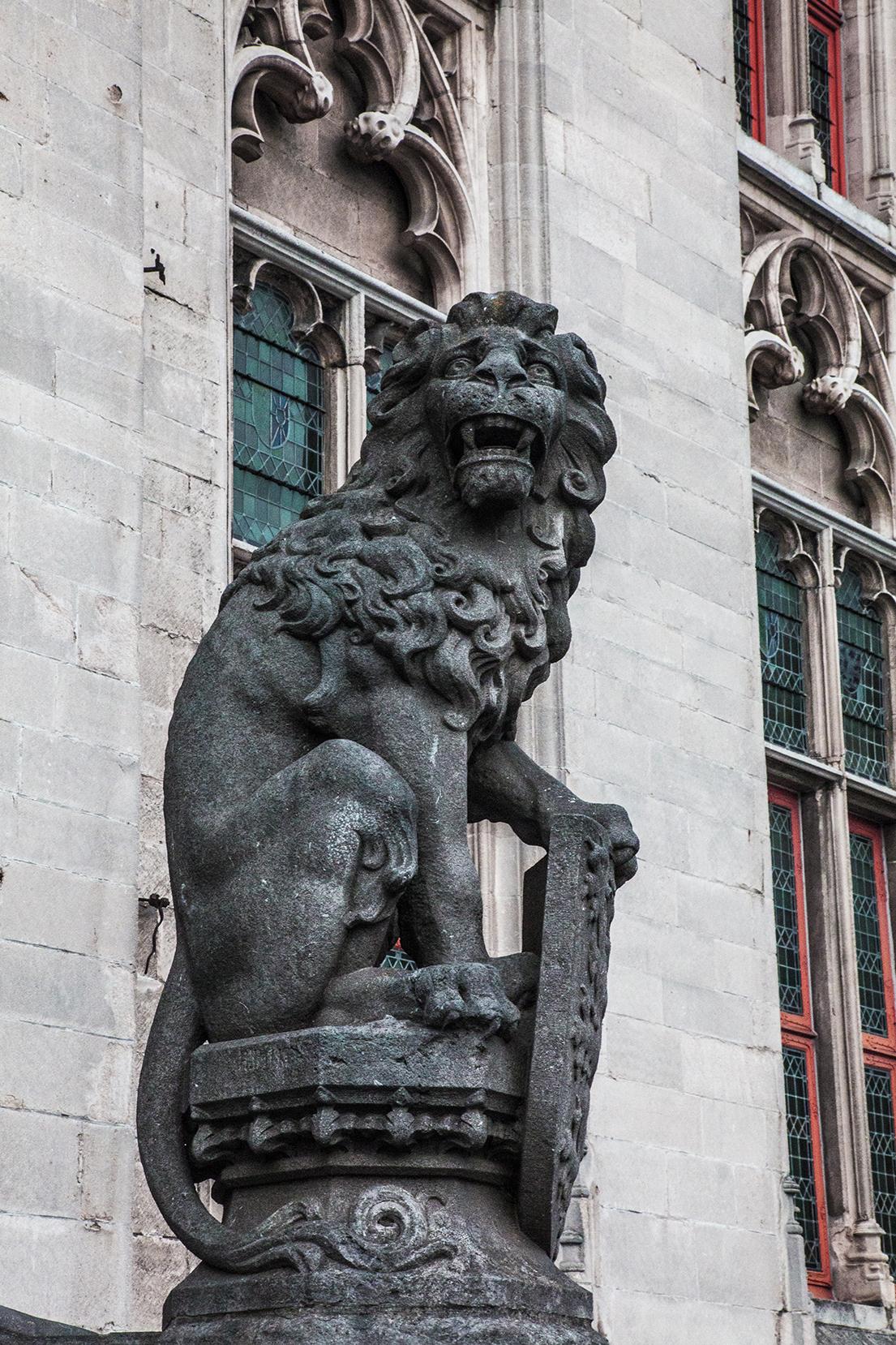 This lion lacks confidence