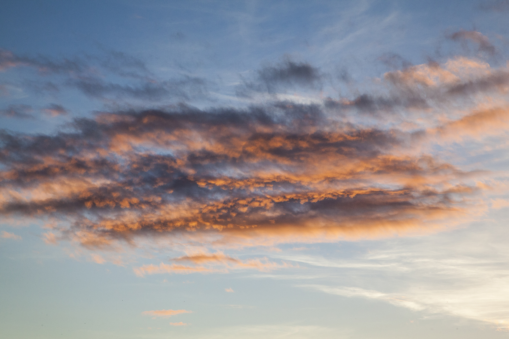 orange cloud web.jpg
