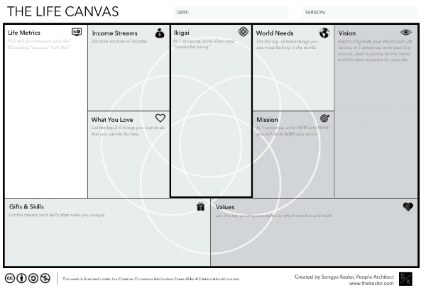 THE LIFE CANVAS - Inspired by Business Strategy, Tested by Life Experience