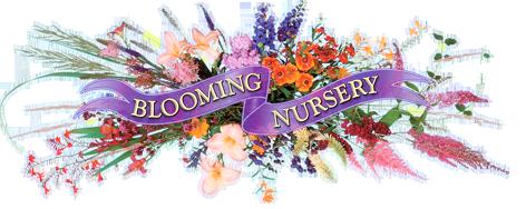 Blooming Nursery.png