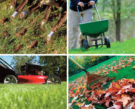 fall-lawn-care collage.jpg