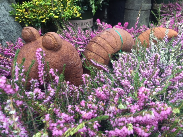 Willy the worm in heather.jpg