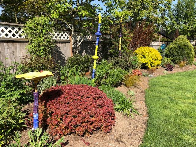Steve's yard - sunny border.jpg