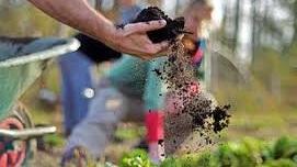working+soil+in+garden.jpg
