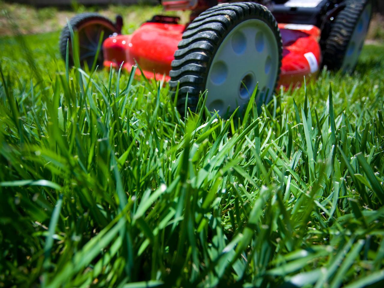 Lawn mowing.jpg