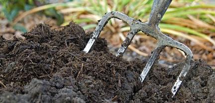 adding compost to garden.jpg