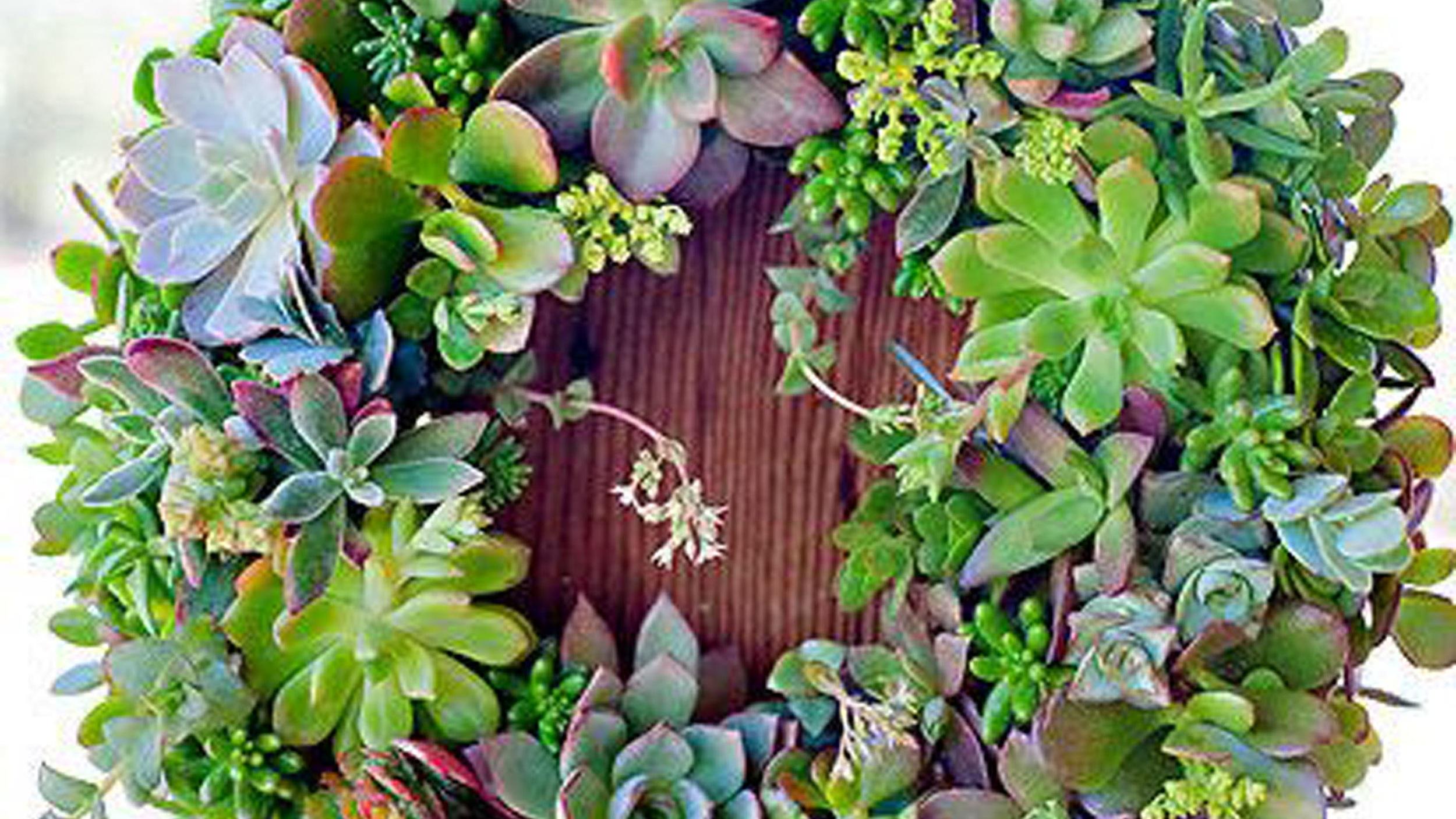outdoor+succulent+wreath.jpg