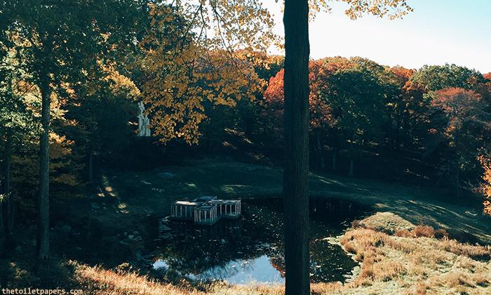 glasshouse4.jpg