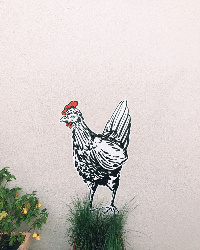 omnivore-rooster.jpg