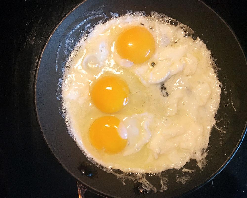 saltieseggs-01-eggs.jpg