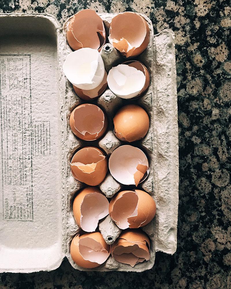 eggshells-carton.jpg