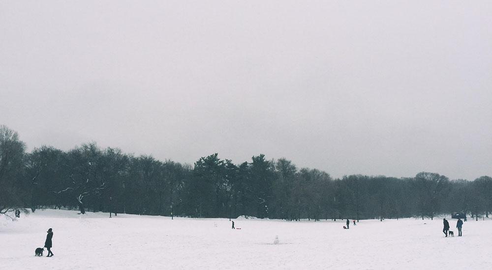snow-park(w)(02).jpg