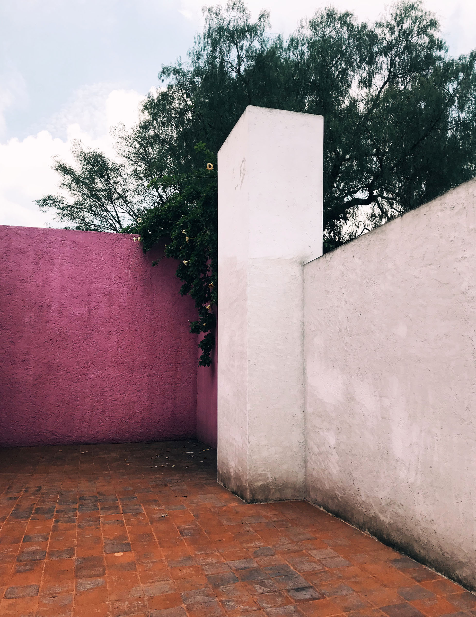 cdmx-05-barragan-terrace.jpg