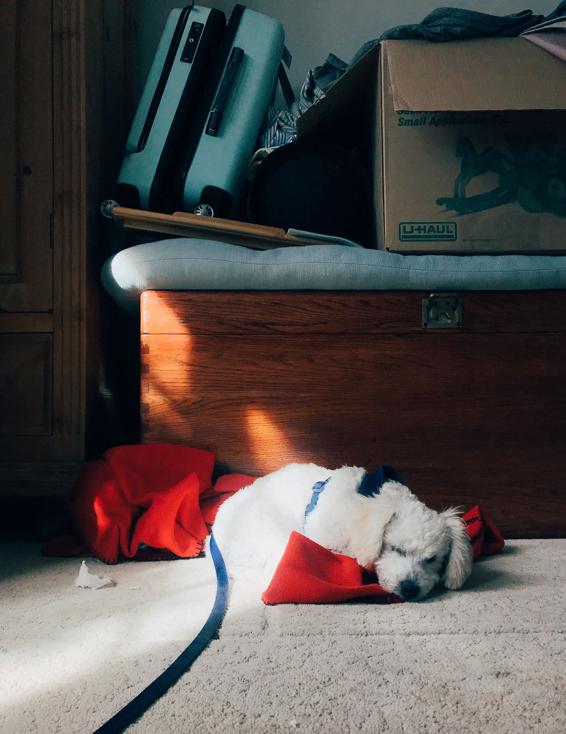 SOM-SLEEPING-05.jpg